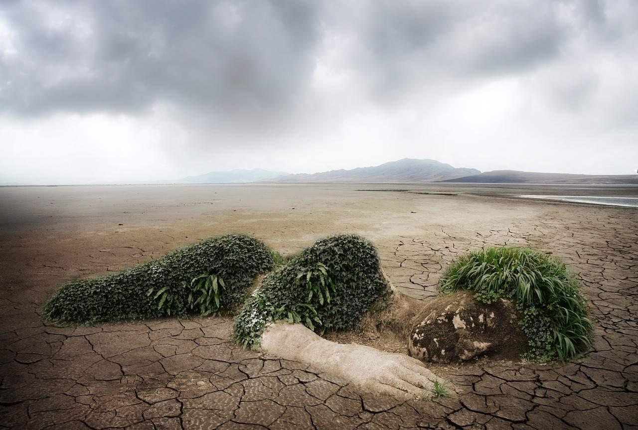 Klimaschutz - Klima-Aktien gefragt