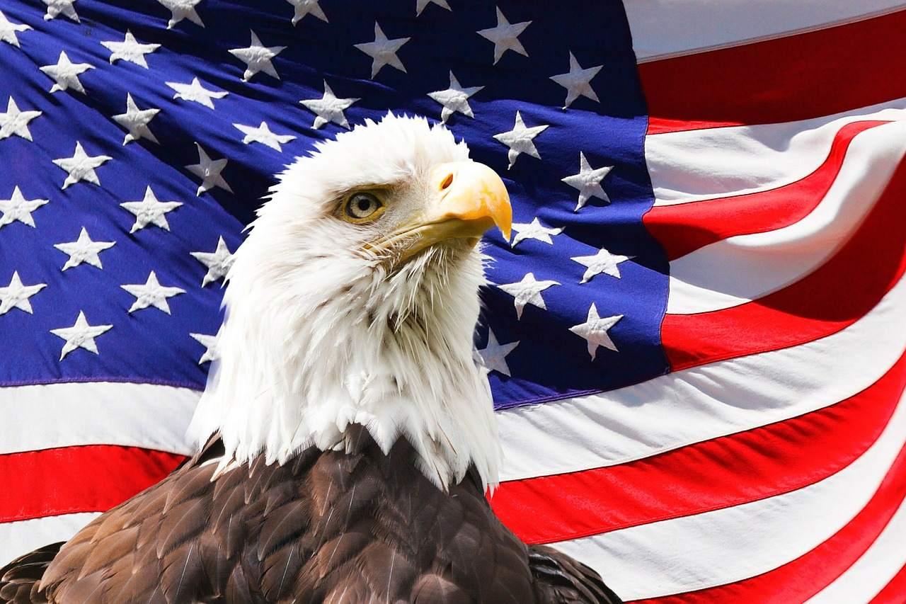 USA Flagge und Vogel - aktuell ISM Index