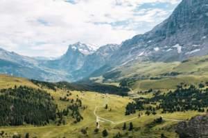 Der Schweizer Franken als sicherer Hafen in der Coronakrise?
