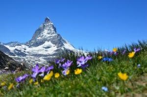 Der Schweizer Franken tendiert derzeit zum Euro aufwärts