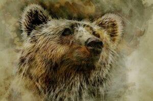 Aktienmärkte: Weshalb die Bären noch eine Chance bekommen - Corona-Rally vorbei?