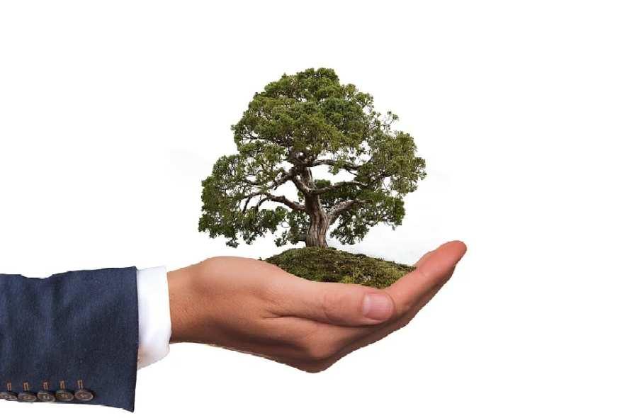 ESG - Korrektur oder geplatzte Blase?