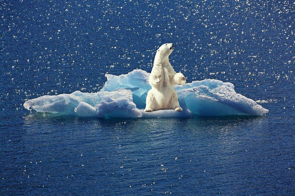 Chriatian Rieck über den Klimawandel