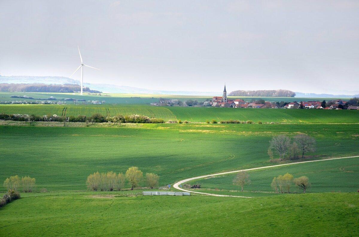 Landschaft mit grünen Wiesen