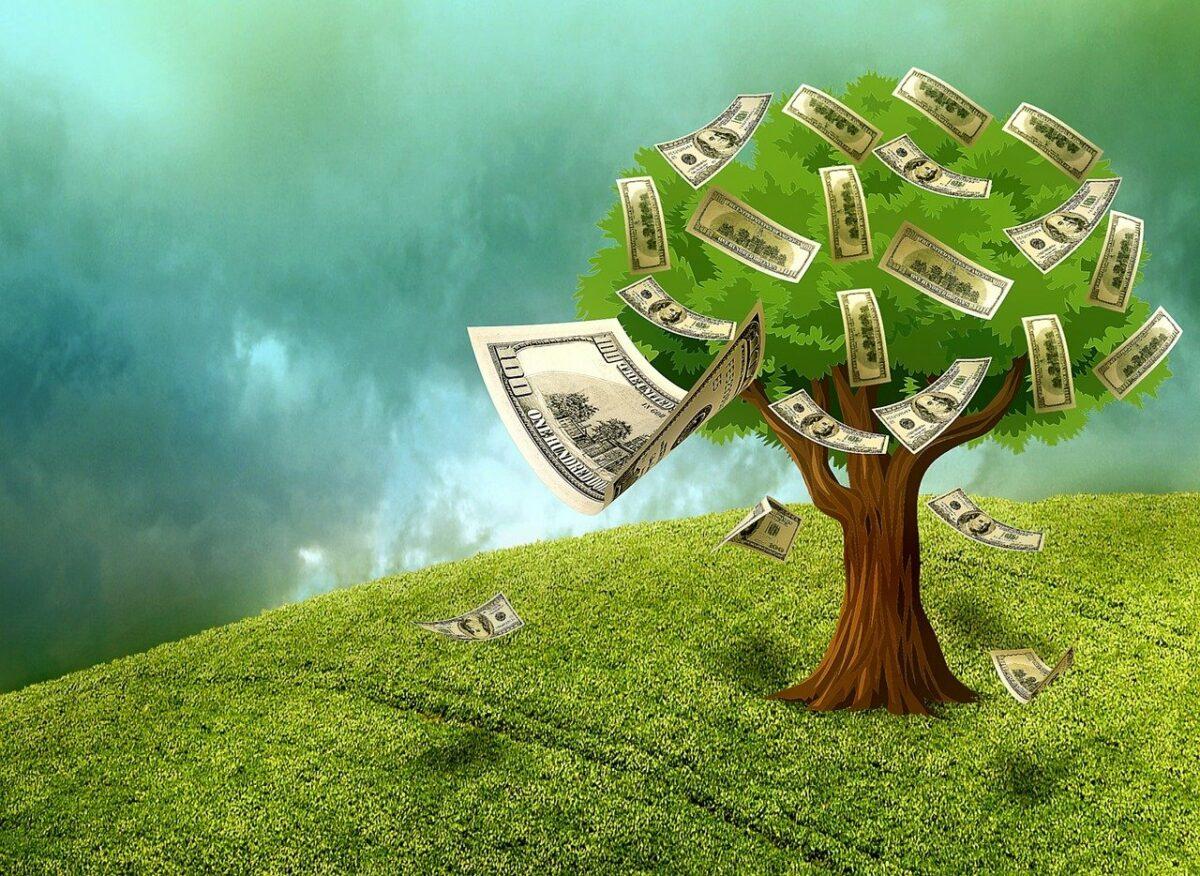 Geldscheine an einem Baum