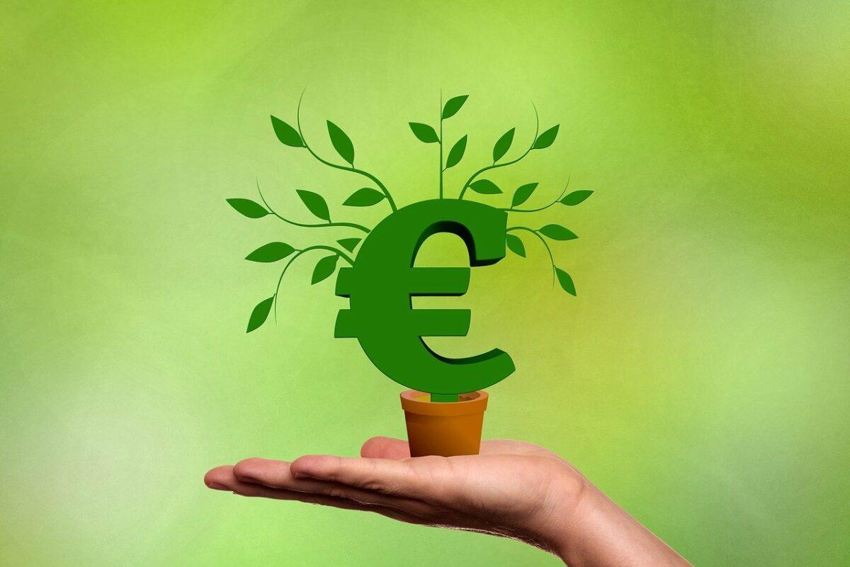 Euro-Symbol auf einem Blumentopf