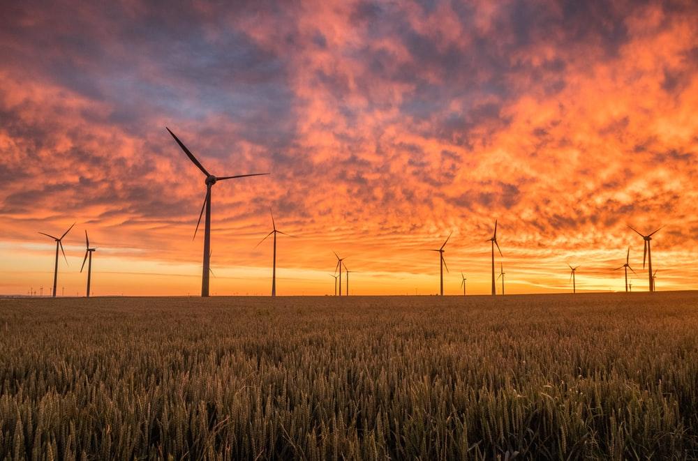 Energiewende und Energiekrise